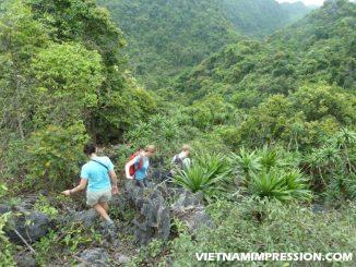 Berkunjung Ke Taman Nasional Cat Ba Vietnam